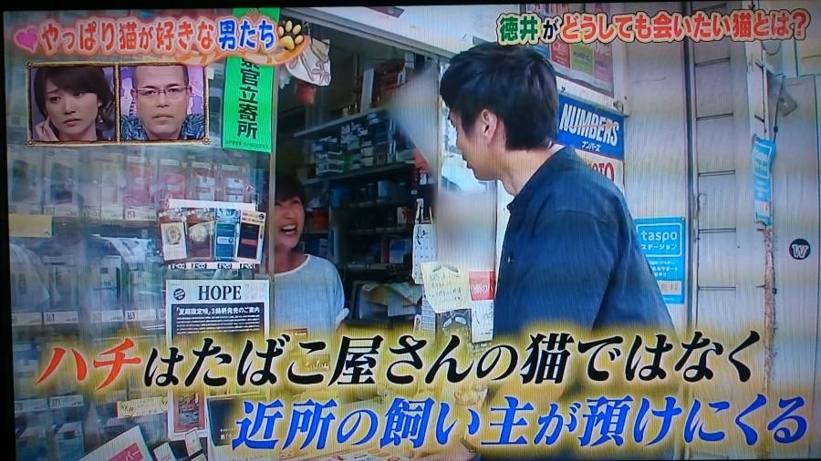ナイナイアンサー最強新セレブ妻角川慶子の3億円の豪邸初潜入